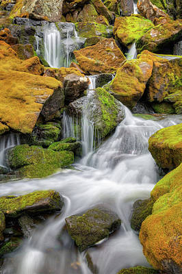 Seasonal Photograph - Mossy Rock Falls by Bill Wakeley