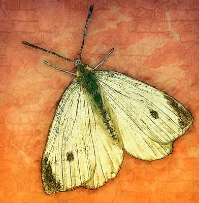 Moth Print by Jack Zulli