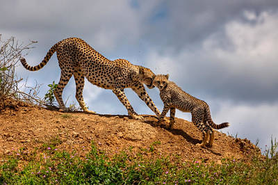 Tanzania Photograph - Mother Love by Amnon Eichelberg