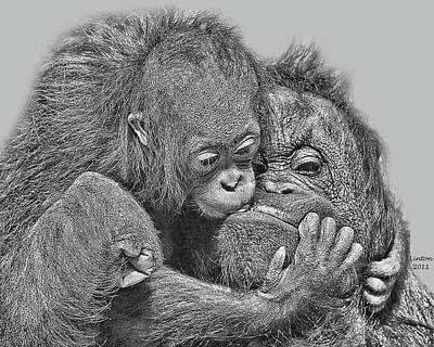 Orangutan Digital Art - Mother Love by Larry Linton