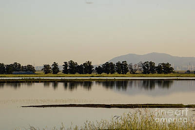 Mount Diablo Reflection Print by Juan Romagosa
