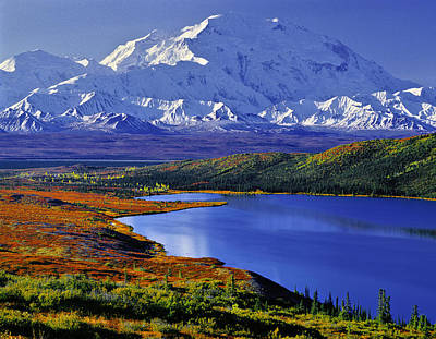 Mount Mckinley And Wonder Lake Campground In The Fall Print by Tim Rayburn