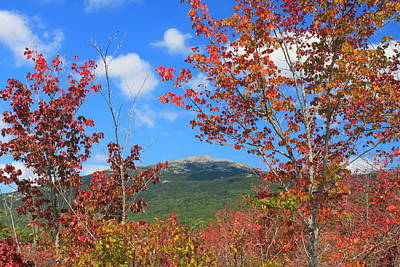 Mount Monadnock Red Maple Foliage Print by John Burk