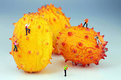 Micro Miniature Photograph - Mountain Climber On Mangosteens by Paul Ge