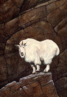 Mountain Goat Painting - Mountain Goat by Frank Wilson