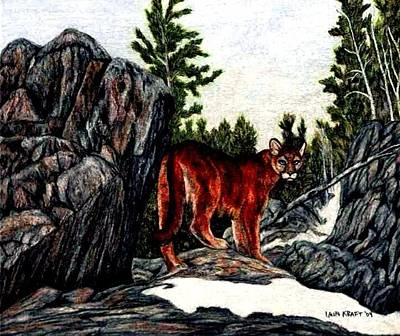 Lions Painting - Mountain Lion Cougar Painting by Lauri Kraft