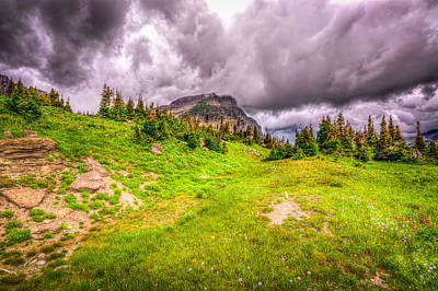 Mountain Meadow Print by Spencer McDonald