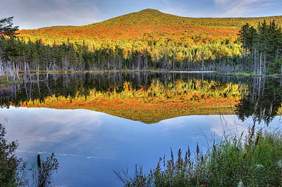 Beaver Photograph - Mountain Reflections by Bill Wakeley