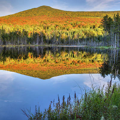 Beaver Photograph - Mountain Reflections Square by Bill Wakeley