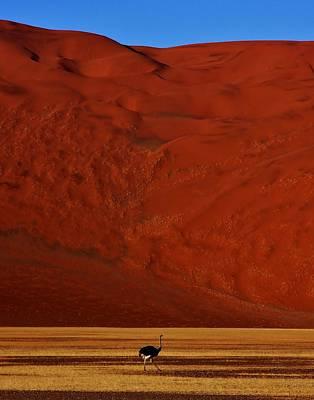 Mountainous Dune Print by Stacie Gary