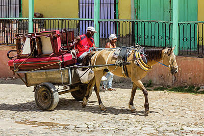 Moving Day In Trinidad Print by Dawn Currie
