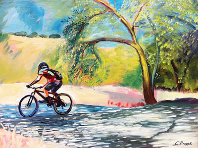 Mt. Bike With Tree Shadows Original by Colleen Proppe