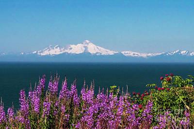 Alaska Photograph - Mt Lliama Volcano Alaska by Louise Magno