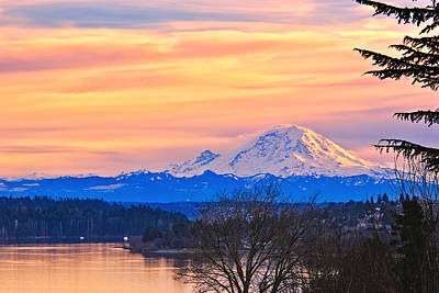 Mt Rainier From Lake Washington Print by Alvin Kroon