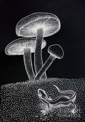 Salamanders Drawing - Mushrooms by Eva Ryczaj Lemmo
