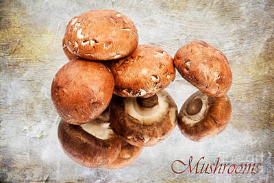 Mushrooms Print by Jan Tyler