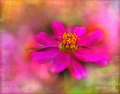 Zinna Photograph - Music In The Garden by Judi Bagwell