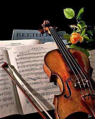 Violin Bows Violin Bows Photograph - Music Is A Moral Law by Endre Balogh
