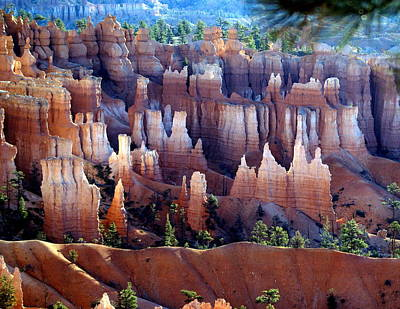 Muted Bryce Print by Marty Koch