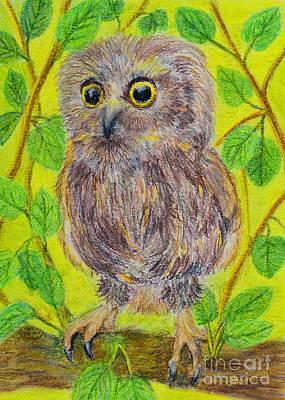 My Confused Little Owl Original by Olga Hamilton