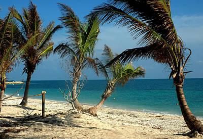 Florida Photograph - My Favorite Beach by Susanne Van Hulst