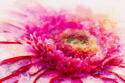 Gerbera Photograph - My Favourite Abstract by Clare Bevan