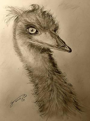 Emu Drawing - My Friend Emu by Jose A Gonzalez Jr