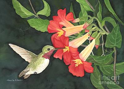 Trumpet Painting - My Hummingbird - Watercolor by Hao Aiken