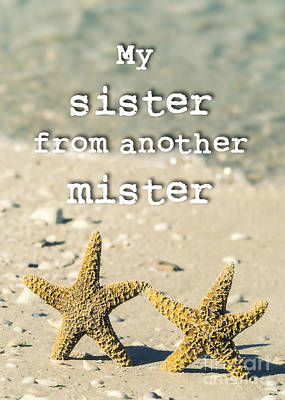 Sealife Photograph - My Sister From Another Mister by Edward Fielding