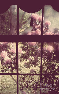 My Window Print by Mindy Sommers