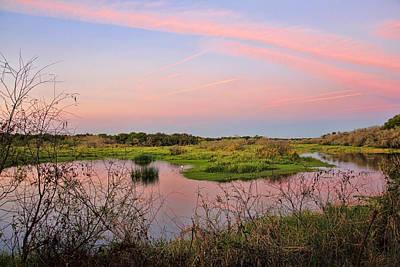Birds Photograph - Myakka Wetlands By H H Photography Of Florida by HH Photography of Florida
