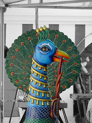 Shakti Photograph - Mylapore Peacock by Richard Reeve