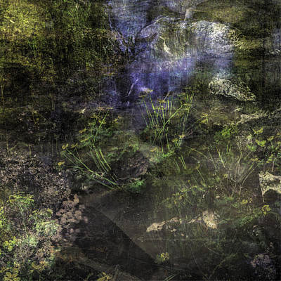 Abtract Digital Art - Mysterious Woods by Toppart Sweden