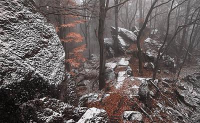 Photograph - Mystery Of Winter Rocks by Jenny Rainbow