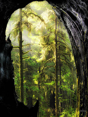 Mystical Forest Opening Print by Leland D Howard