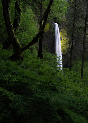 Oregon Photograph - Mystical Waterfall 2 by Larry Marshall