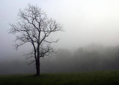 Mysty Tree Print by Marty Koch