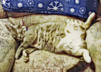Nap Position Number 16 Print by David G Paul