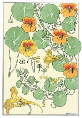 Nasturtium Print by Eugene Grasset