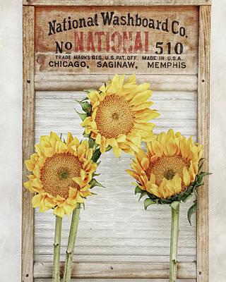 National Washboard Print by Alison Sherrow I AgedPage