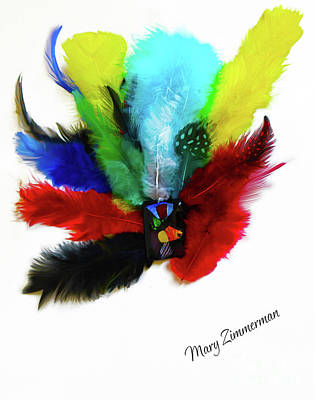 Handcrafted Mixed Media - Native American Tribal Feathers by Mary Zimmerman