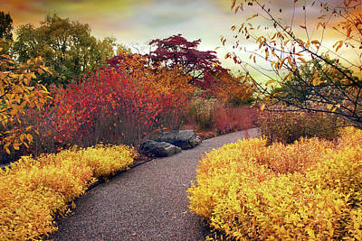 Red Leaf Digital Art - Native Garden Walkway by Jessica Jenney