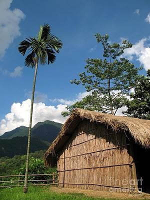 Bamboo Photograph - Native House by Yali Shi