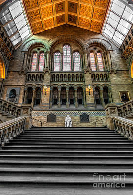 Great Britain Digital Art - Natural History Museum by Adrian Evans