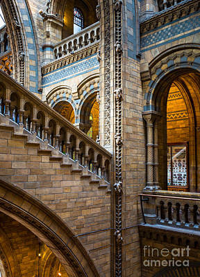 Natural History Museum Staircase Print by Inge Johnsson
