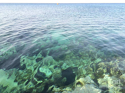 Phthalo Green Photograph - Natural Sea Aquarium Cyprus by Clay Cofer