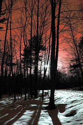 Art In Nature Digital Art - Nature Of Wood by Mark Ashkenazi