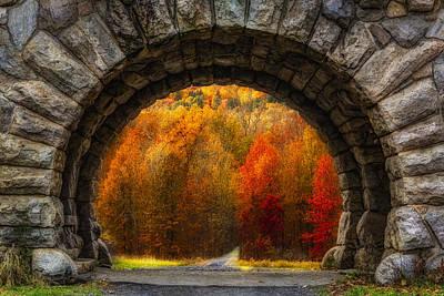 Suburban Digital Art - Natures Color Schemes by Susan Candelario