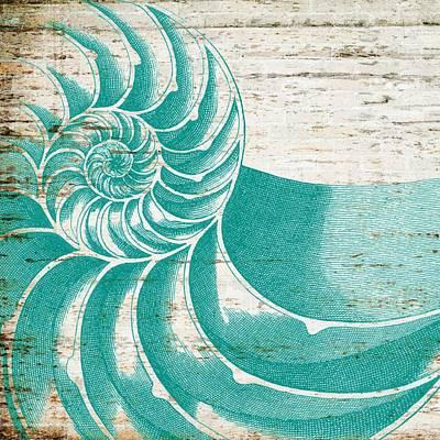 Beach Mixed Media - Nautilus Shell Distressed Wood by Brandi Fitzgerald