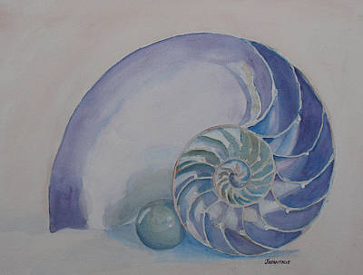 Nautilus With Marble Print by Jenny Armitage